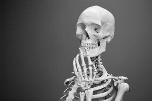 test del cuerpo humano imagen